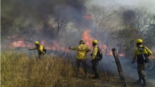"""Incendios forestales en Bolivia: experto asegura que la única solución vendrá """"del cielo"""""""