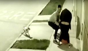Puente Piedra: delincuentes fingen pasear perro para robar