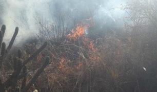 Incendio forestal arrasó con cinco hectáreas de pastos naturales en Huaraz