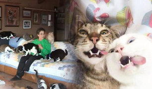 GatoLover: mujer de California vive con mil gatos