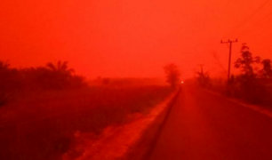 Indonesia: incendios forestales tiñen de rojo el cielo de la isla Sumatra