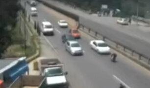 México: rescate de perro en carretera ocasionó choque múltiple