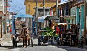 Cuba: recurren a caballos y bueyes por escasez de combustible