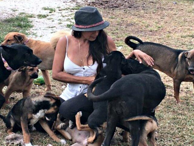 Mujer refugió a 97 perros para salvarlos del huracán Dorian