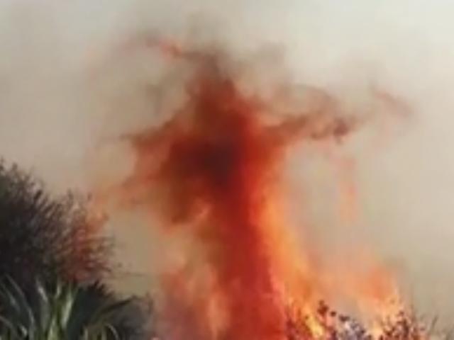Pasco: pobladores y bomberos luchan contra incendio forestal