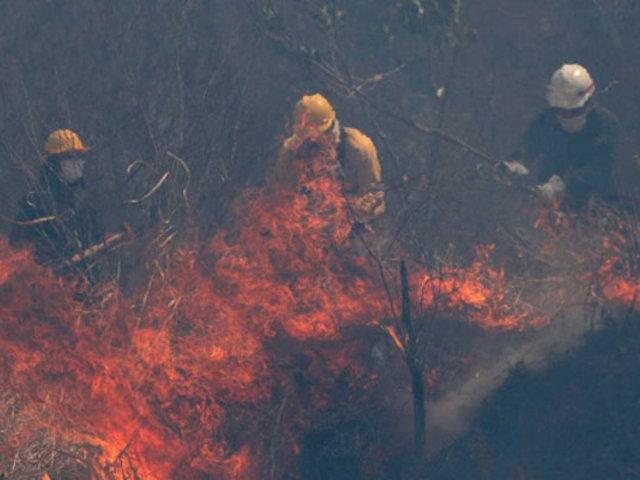 Francia envía ayuda a Bolivia para combatir incendios en la Amazonia