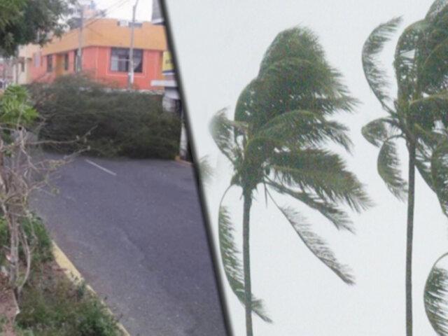 Fuertes vientos azotan zonas de Lima y Callao