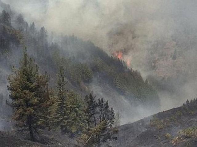Cajamarca: incendio consume bosques cercanos a la granja Porcón