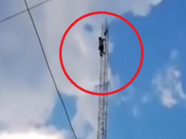 Junín: vecino arriesgó su vida para rescatar a gato atrapado en torre