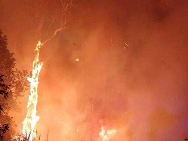 Sequías e incendios forestales azotan territorio australiano