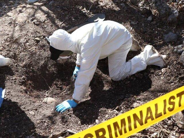Hallan más de 100 bolsas con restos humanos en un bosque de México