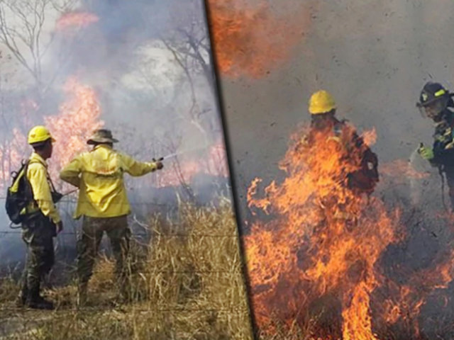 Bolivia: se agravaron incendios forestales y hay riesgo de que arrase poblados