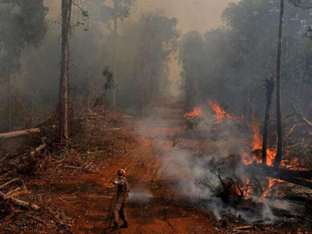 Fondos para la reforestación de la Amazonía permanecen suspendidos