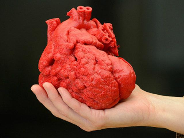 Ecuador: imprimen órganos humanos con patologías en 3D