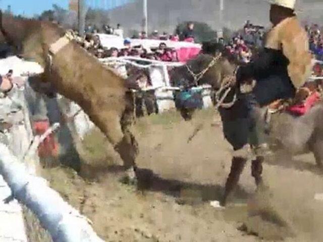 Impactantes imágenes:  novillo escapa de ruedo y embiste al público