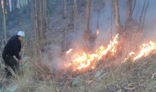 Áncash: extinguen incendio que arrasó con cuatro hectáreas de pastos