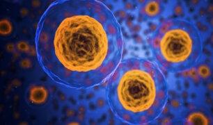 Nobel de medicina: descubren relación entre células y oxígeno que ayudará a combatir cáncer