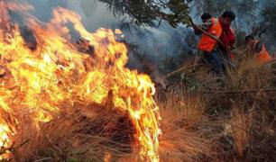 Cusco: incendio forestal obliga a evacuar alrededor de 200 escolares