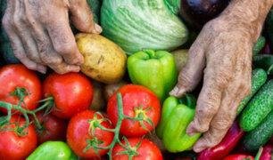 Conozca qué requisitos seguir para acceder a los créditos FAE-Agro