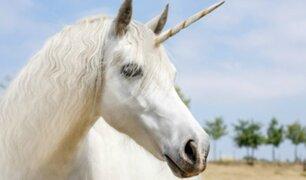 Los unicornios sí existieron pero no fueron como te los imaginas