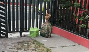 Arequipa: hallan dinamita al interior de caja en distrito Luis Bustamante y Rivero