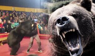Rusia: domador atacado por oso se recupera tras ser mordido