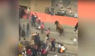 Villa María del Triunfo: toro ataca a mujer durante evento taurino