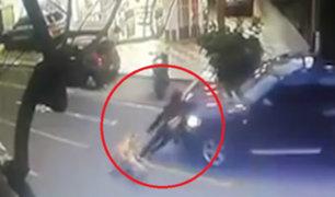 Miraflores: camioneta embistió a hombre y sus mascotas