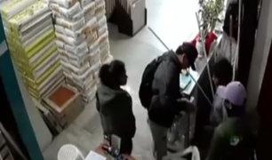 Cañete: delincuentes asaltan tienda de cerámicas y se llevan 5 mil soles