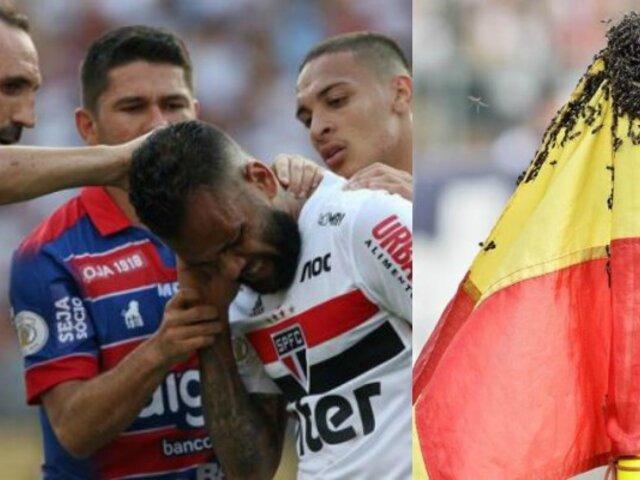 Futbolista es atacado por enjambre de abejas en pleno partido