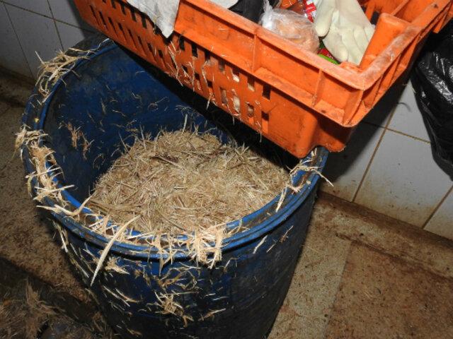 VES: clausuran avícola que funcionaba en condiciones insalubres