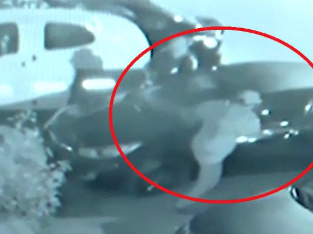 Ate: delincuentes roban espejos de auto en menos de diez segundos