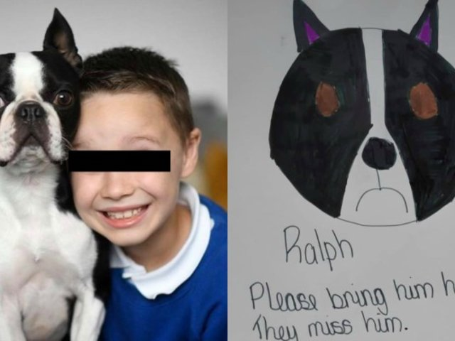 Los emotivos carteles de un niño que busca a su perro robado