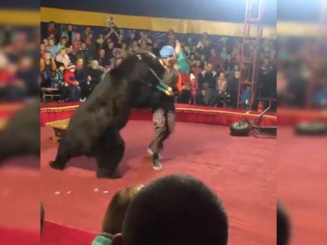 VIDEO: oso ataca a su domador en pleno acto circense