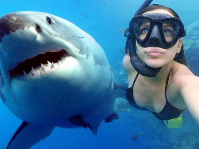 Bahamas: conozca a una bióloga, amiga de los tiburones