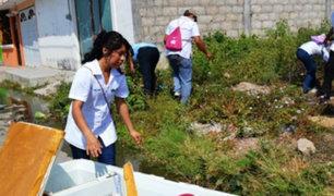 Minsa elabora plan de prevención contra el dengue y zika