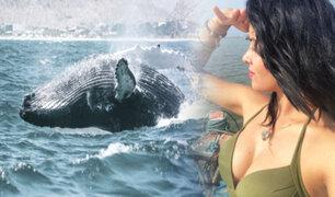 """Conozca la isla """"Hueso de Ballena"""" en el caribe del norte peruano"""