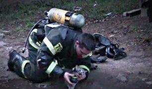 Así fue el emotivo rescate de un gato intoxicado por humo de incendio