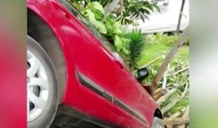 Bajada Balta: dos autos casi caen a club Waikiki en los últimos tres meses
