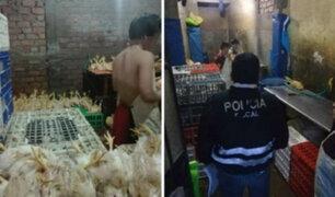 Independencia: incautan más de cinco toneladas de carne de ave en malas condiciones
