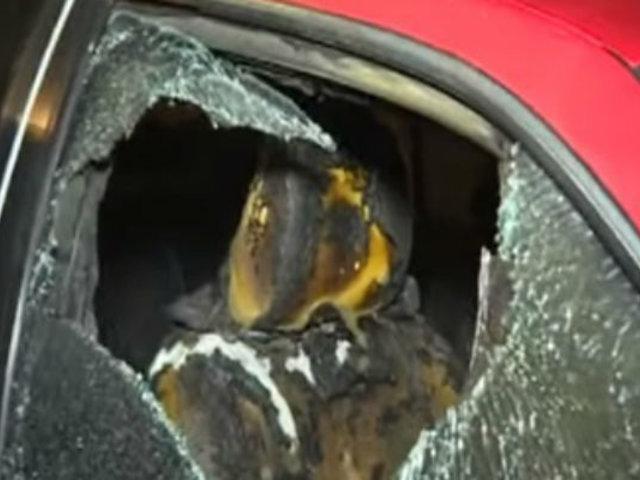 San Miguel: desconocidos incendian auto de abogada
