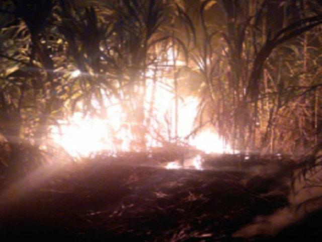 Áncash: bomberos controlaron incendio que destruyó pastizales y cultivos