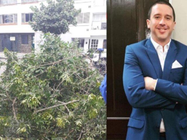 Elecciones 2020: Mijael Garrido Lecca es multado por podar árbol que cubría su propaganda