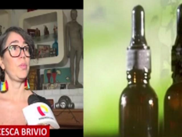 Actriz Francesca Brivio solicita a Martín Vizcarra legalizar el cultivo de cannabis medicinal