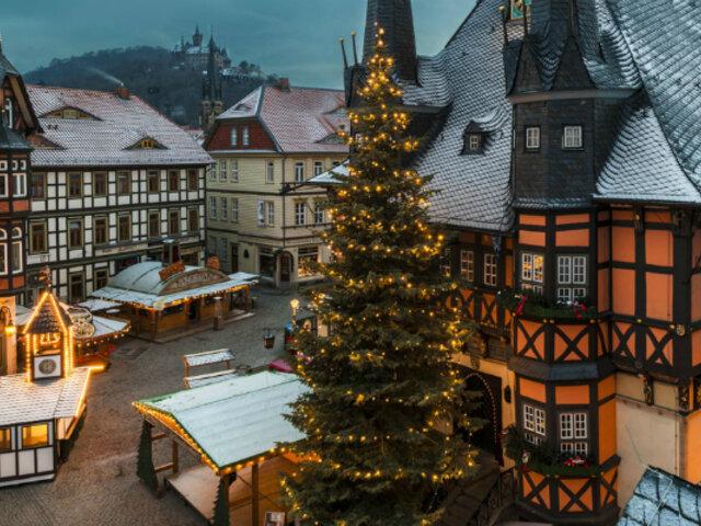 Navidad 2019: Dinamarca encendió árbol navideño de casi 10 metros de alto