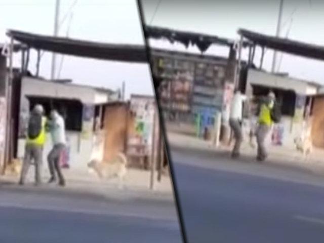 Pasajeros de bus arreglan sus diferencias a golpes en la Panamericana Sur