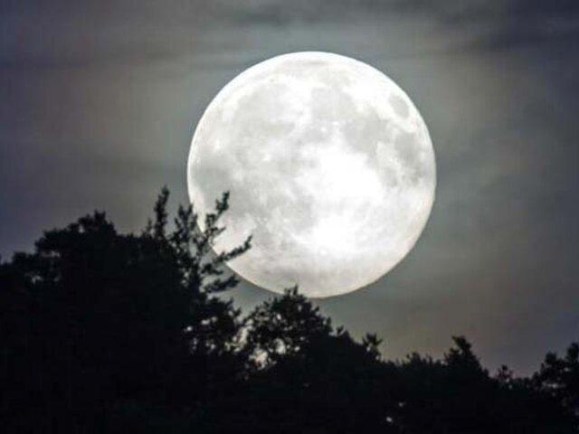 Ciencia revela que la Luna se aleja casi 4 centímetros de la Tierra al año