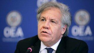 Régimen venezolano rechaza a OEA como observador en elecciones 2020