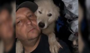 Adopta a 600 perros para protegerlos del intenso frío en Alemania