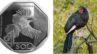 Moneda de S/ 1 alusiva a la pava aliblanca es elegida como la mejor del mundo